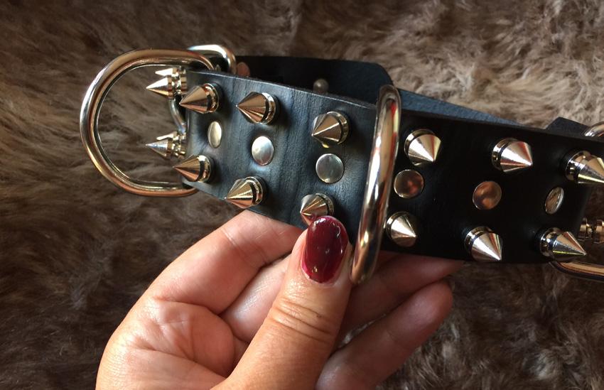 Productinformatie - Hondenhalsband met pinnen van Strict Leather