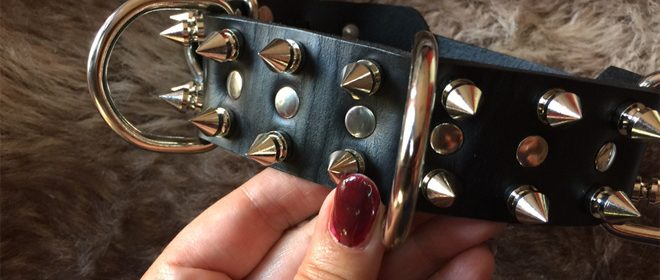 Productinformatie - Hondenhalsband met pinnen van Strict Leather
